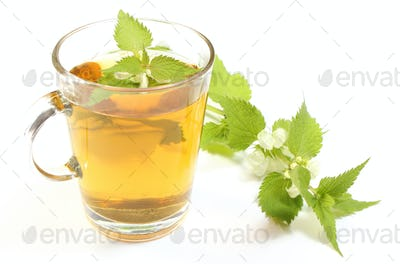 Fresh nettle with white flowers and cup of beverage