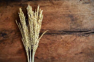wheat on old wood background