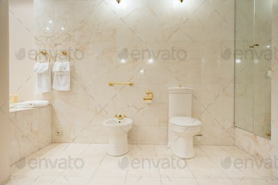 Toilet interior with marble tiles