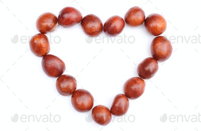 Heart of chestnut on white background