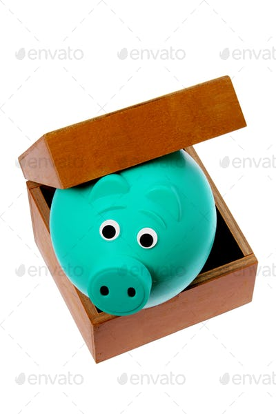 Piggy Bank in Box