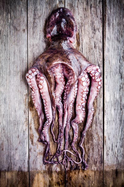 whole fresh raw octopus on a rustic table