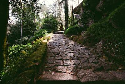 An old path