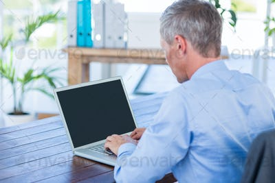 Businessman working with laptop computer in office