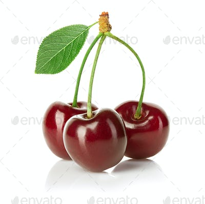 Cherries isolated on white background