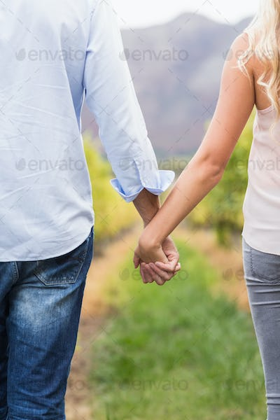Young happy couple holding hands in the grape fields
