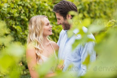 Young happy couple smiling and embracing each other in the grape fields
