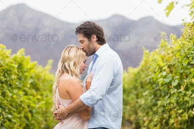 Young happy man kissing woman on the forehead in the grape fields