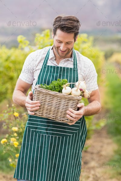 Young happy farmer holding a basket of vegetables in the field
