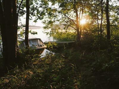 Morning sunshine by the lake