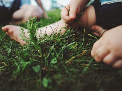 toddlers hands feeling grass