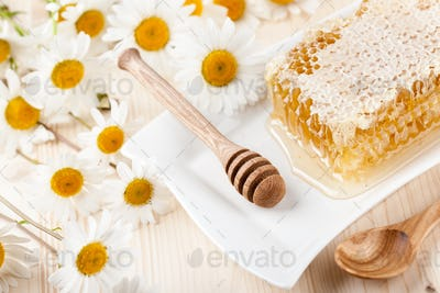 Honey comb and chamomile flowers