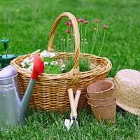 Gardening equipment and flowers