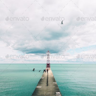 Foster Lighthouse with a flying bird