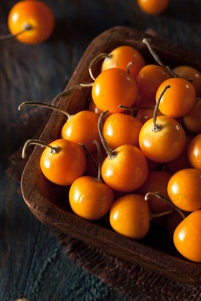 Orange Organic Cape Gooseberries