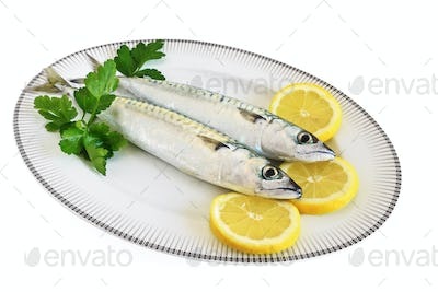 plate with two mackerels