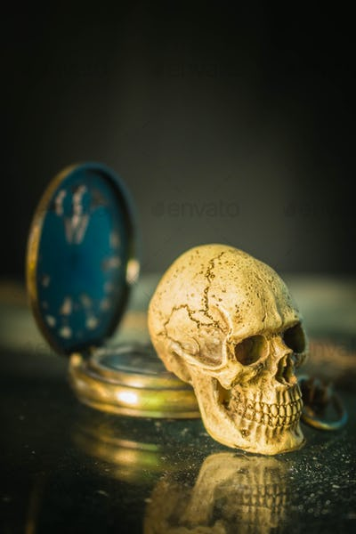 Skull and on a black background.