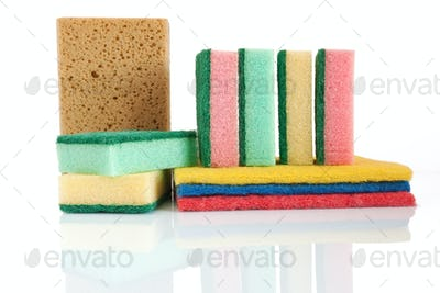 group of sponges