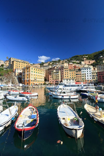 Camogli, harbor with fishing boats