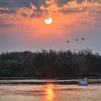 sunrise in the Danube Delta, Romania