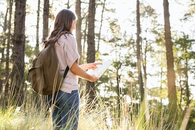 Brunette hiker reading map in the nature