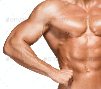 Torso of male body builder on white background