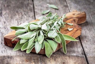 Fresh organic bundle of sage
