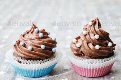chocolate cupcakes with colorful sprinkles