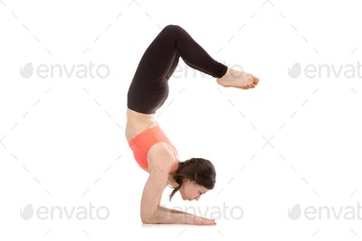 Yogi female in yoga Scorpion Pose Vrischikasana 1