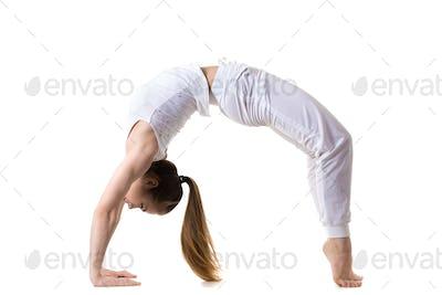 Wheel yoga Pose