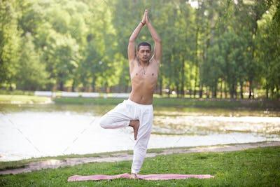 Yoga Vrikshasana pose
