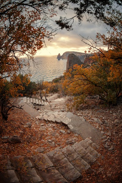 Stairway to the sea among the autumn trees