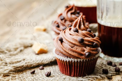 chocolate cupcakes with chocolate frosting and chocolate chips