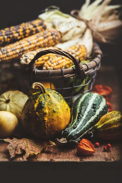 Corn and Pumpkins  on a wooden board