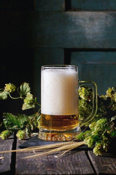 Mug of lager beer
