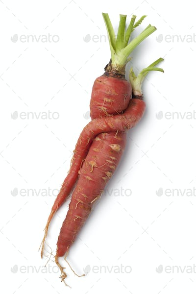 Entwined red carrots