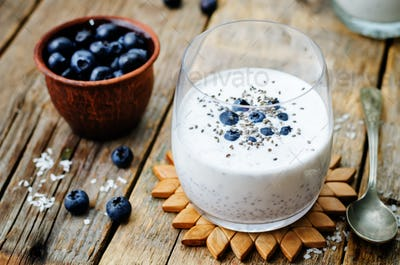 vegan coconut Chia seed pudding with blueberries