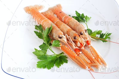 plate with prawns and parsley