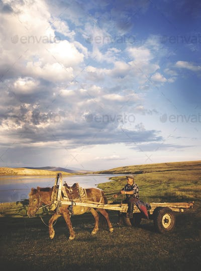 Man Driving Horse Cart Scenic View Nature Tranquil Concept