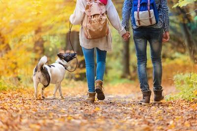 Beautiful couple in autumn nature