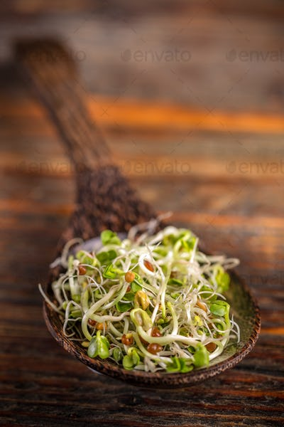 Heap of fresh sprouts