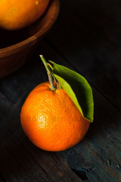 Raw Organic Satsuma Oranges
