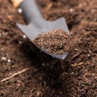 Shovel tool on soil