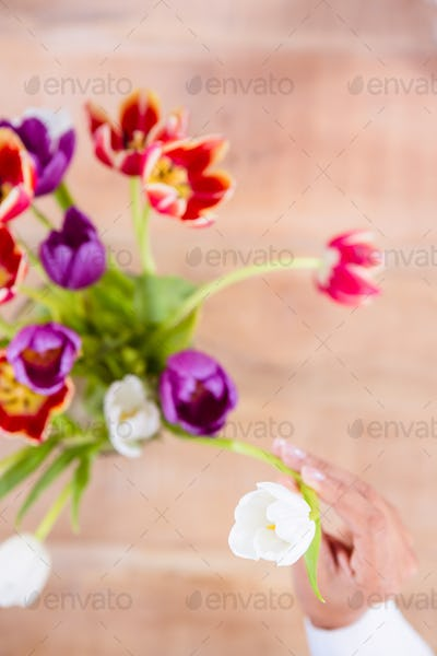 View of hand holing white flower on wooden plank