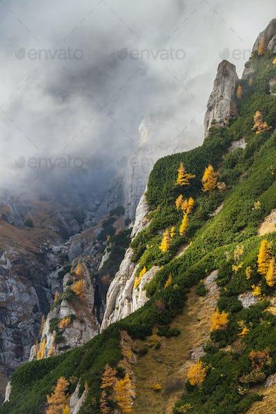 mountain valley in the Bucegi Mountains, Romania