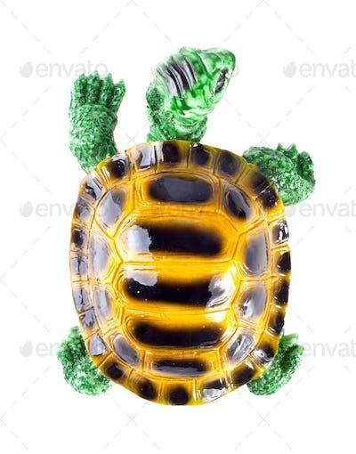 Ceramic figurine of turtle