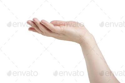 Female hand on a white background. In isolation.