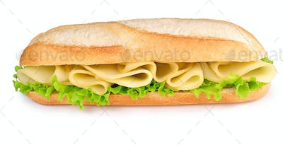tasty cheese sandwich