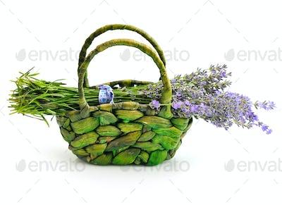 Lavender flowers (Lavandula) in basket on white