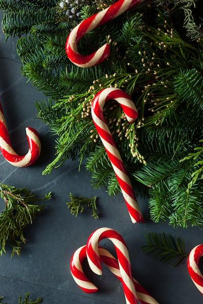 Festive Homemade Candy Canes